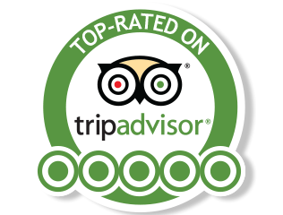 tripadvisor leave review
